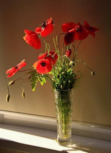 Фото летних цветов в вазе