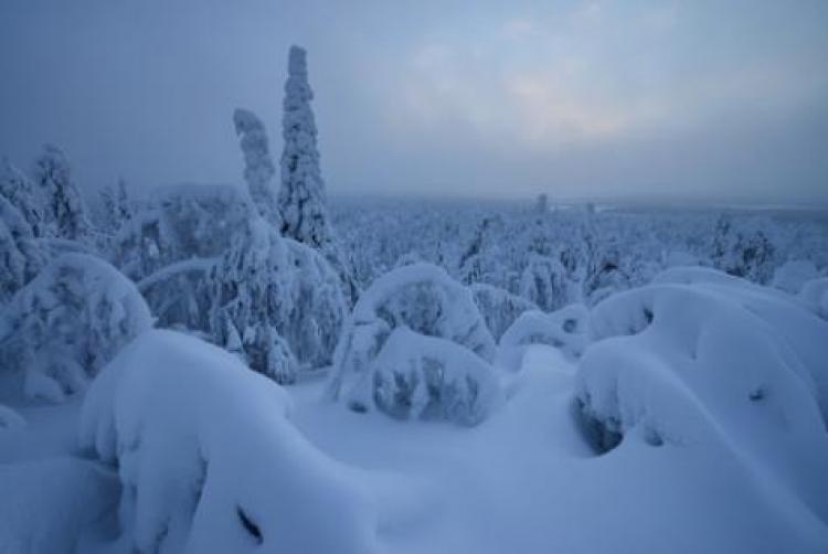 Фототур «Зима наКольском полуострове. Терский берег»