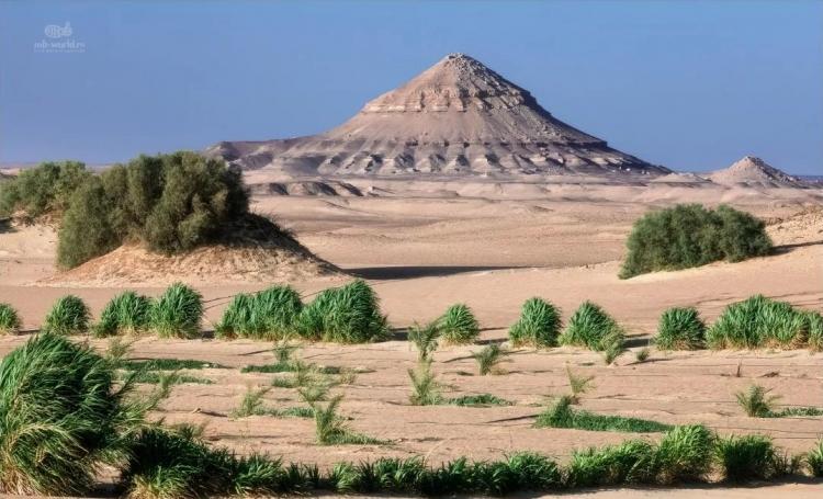 Фотопутешествие в Западную пустыню (Египет)