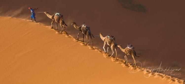 Фототур в Марокко «ОтАтлантики доСахары»