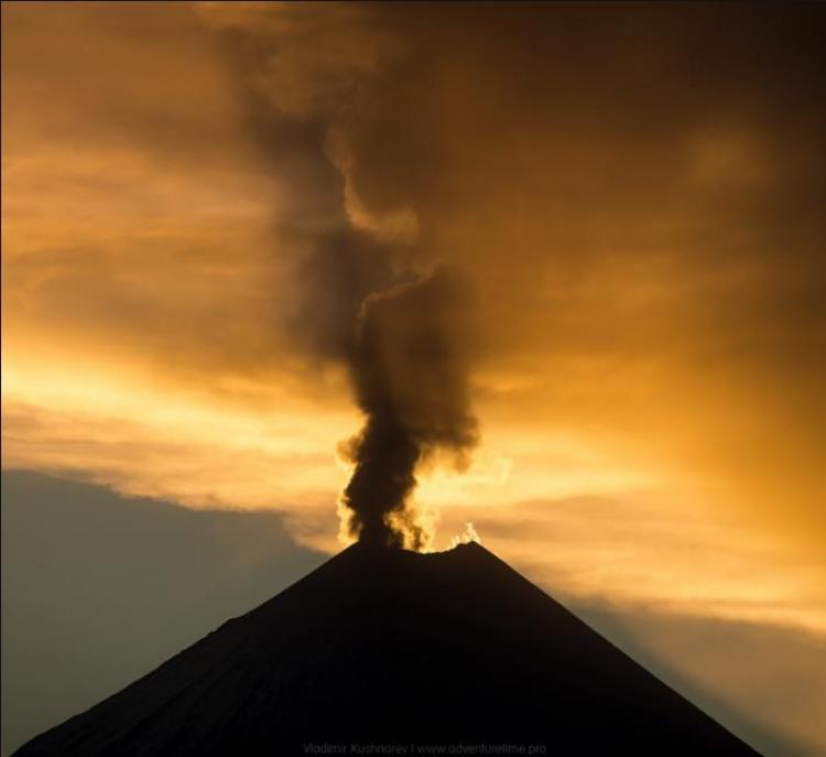 Фототур на Камчатку «Вулканы и медведи»