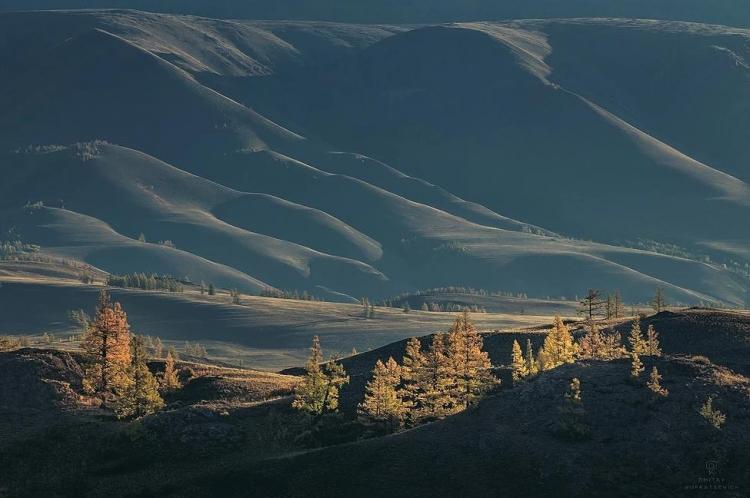 Фототур «Золотая осень на Алтае»