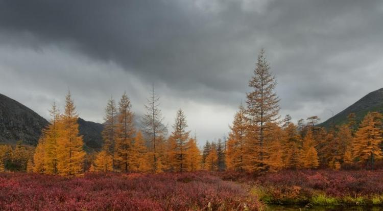 Фототур «Золотая осень наозере Джека Лондона. Колыма»