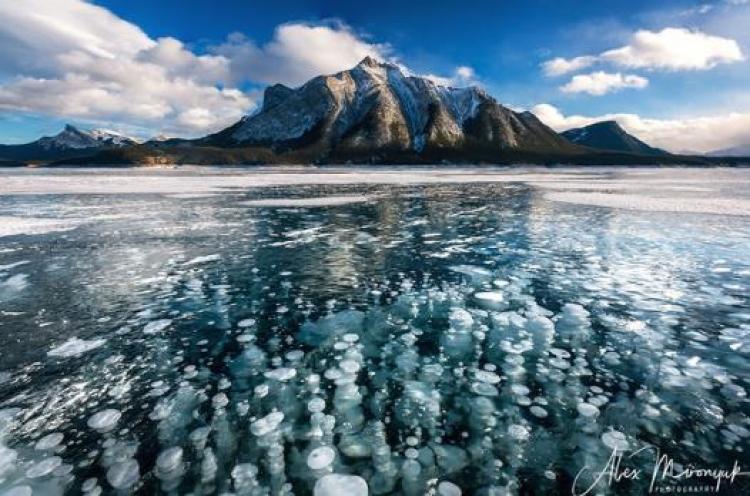 Фототур «Зима в провинции Альберта»