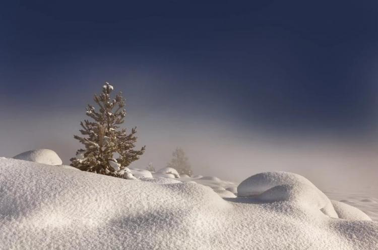 Фототур «Зимние краски Алтая»