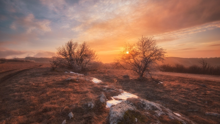 Фототур «Весенняя лирика Крыма»