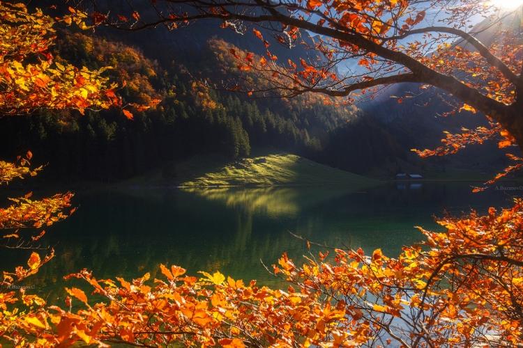 Фототур в Швейцарию «Альпийская осень»