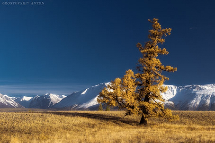 Фототур на Алтай
