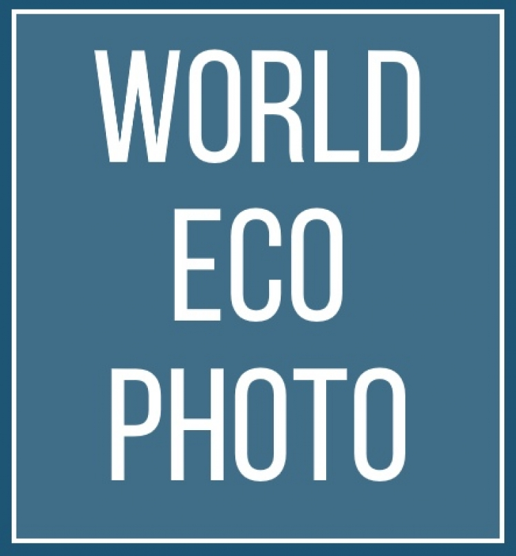 Экологический фотоконкурс World Eco Photo 2019