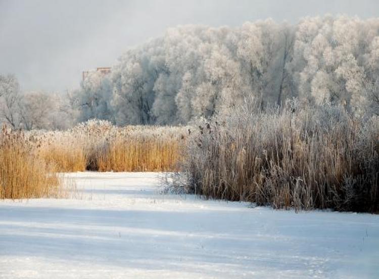 Фотоконкурс «Пейзаж вфеврале»