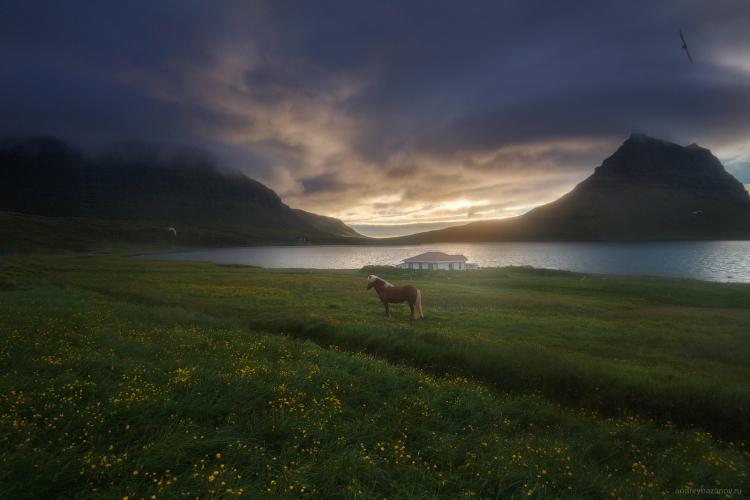 Фототур в Исландию «На краю Земли»