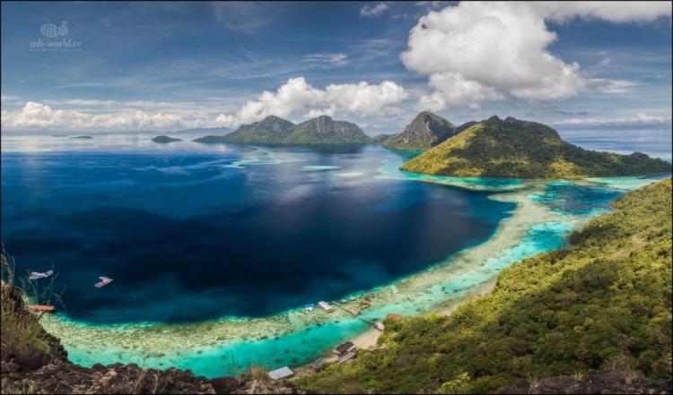 Фототур «Дикая природа острова Борнео (Калимантан)»