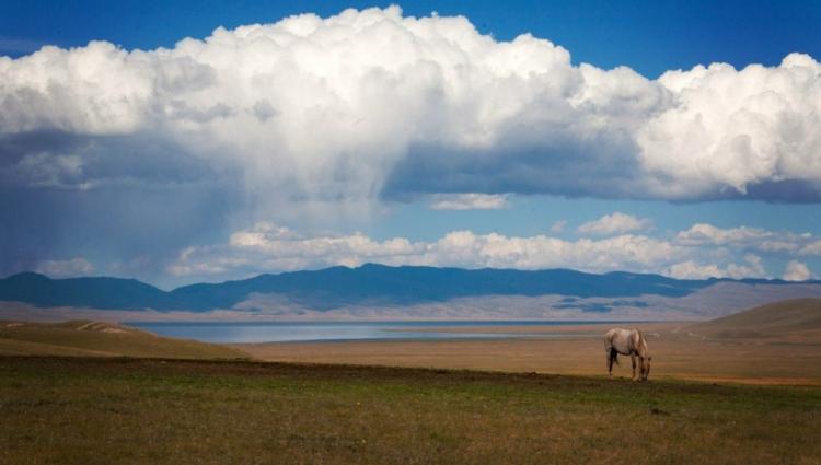 Фото этнографическая экспедиция в Киргизию