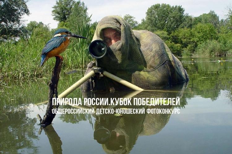 Фотоконкурс «Природа России. Кубок победителей»