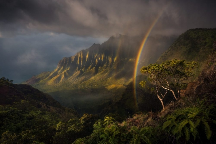 Landscape Photo of the Year Contest