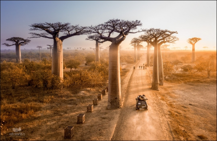 Фототур «Мадагаскар: путешествие встрану лемуров»