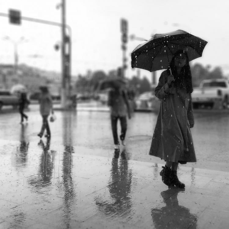 Фотовыставка конкурса «Неглинная, люблю тебя»