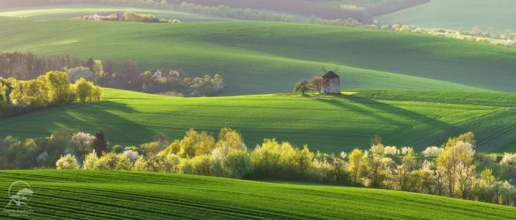 Фототур «Весенняя Моравия (Чехия) изамки Австрии»