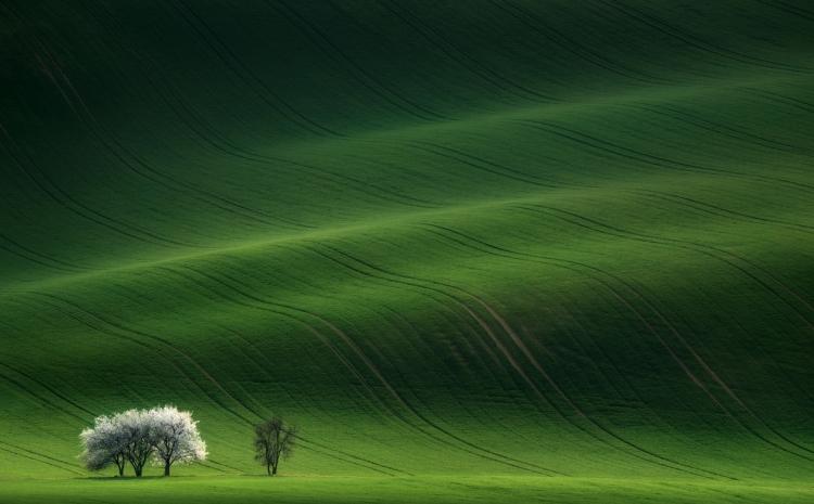 Фототур «Полотна Моравии»