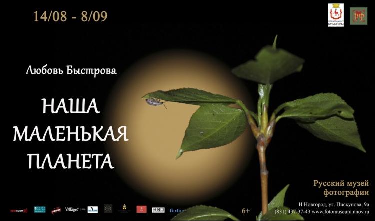 Выставка «Наша маленькая планета»