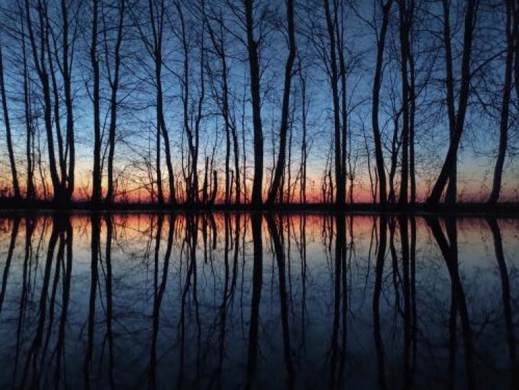 Фотоконкурс «Отражение вфотографии»
