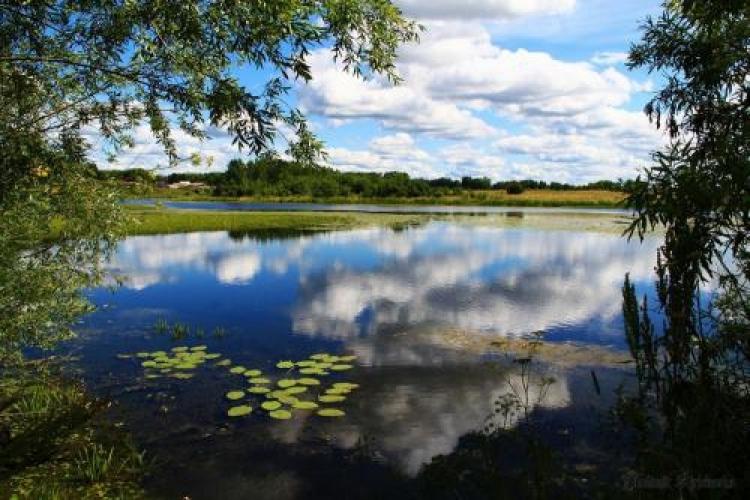 Фотоконкурс «Вотражении воды»