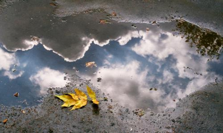 Фотоконкурс «Отражение мира»