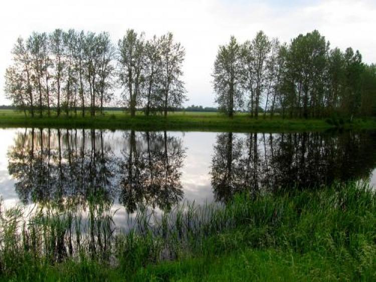 Фотоконкурс «Отражение нафотографии»