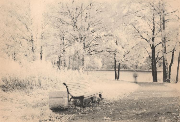 Выставка «Серебряная осень Старого Петергофа»