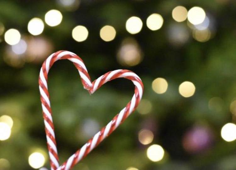 Фотоконкурс «Рождественская фотография»