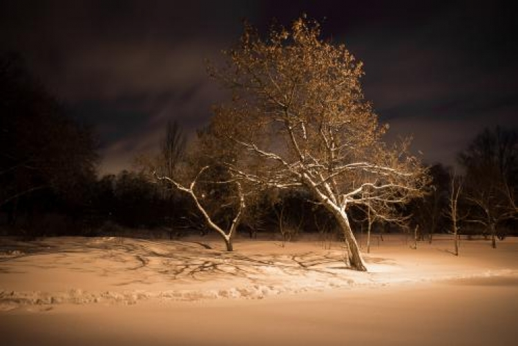 Фотоконкурс «Красивый снег»