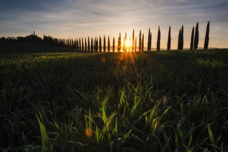 Фототур «Весенняя Тоскана»