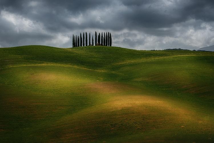 Фототур «Золото Тосканы»