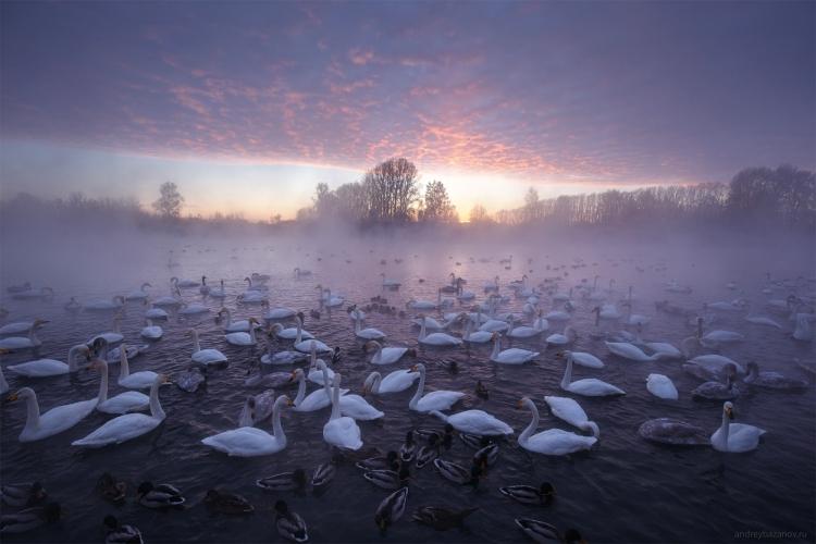 Фототур «Зимний Алтай»