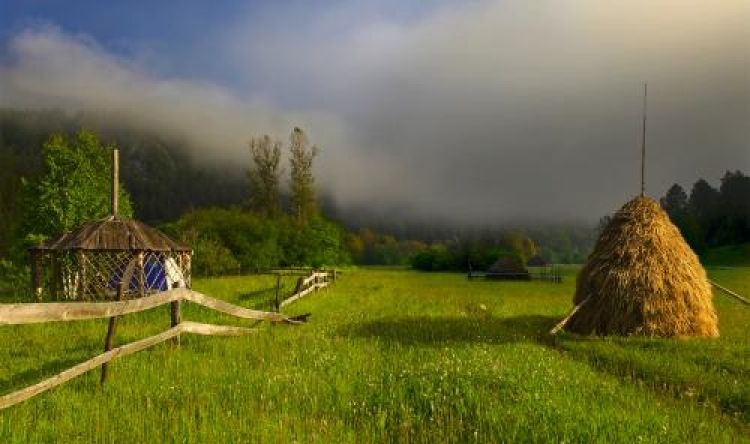 Фотоконкурс «Наступило утро»