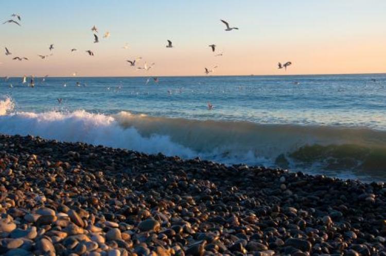 Фотоконкурс «Мир стихии воды»