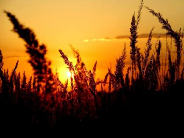 Фотоконкурс «Фотографии заката»