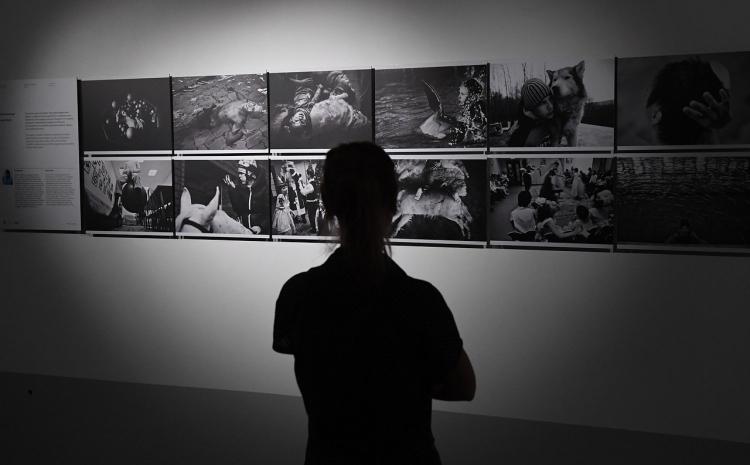 Жюри конкурса Стенина возглавил директор фотослужбы крупнейшего информагентства