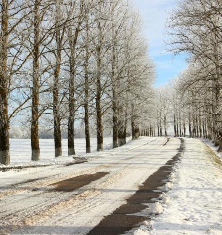 Фотоконкурс «Зимняя дорога»