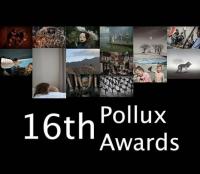 Фотоконкурс «16th POLLUX AWARDS»