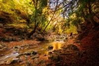Фототур «Краски осени. Внутренняя гряда Крымских гор»