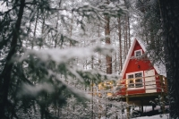 Зимний «GREENVALDWORKSHOP»