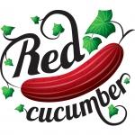 Фотошкола Red Cucumber